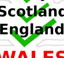 Wales 2013 rugby winners Sticker