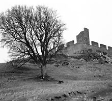 Hume Castle and Tree by JamesPearson