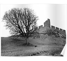 Hume Castle and Tree Poster