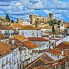 Obidos Castle by Brendan Buckley