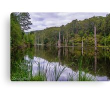 Lake Elizabeth  Canvas Print