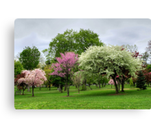 Windy, Cold, Overcast (...But Beautiful) Spring Day Canvas Print