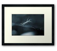 Wire Walker Framed Print
