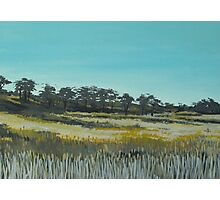 Summer fields of McAlister Photographic Print
