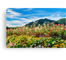 Flowers and Flatirons Canvas Print