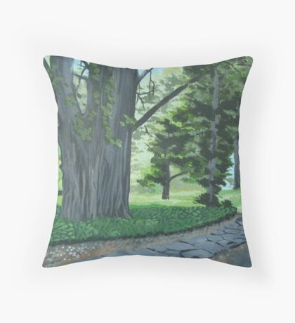 Everglades pathway Throw Pillow