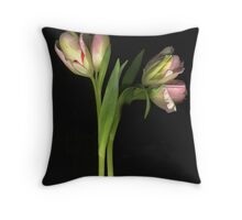 Double Doubles Throw Pillow