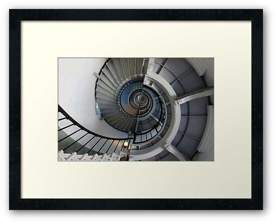 Spiral by Laurie Perry