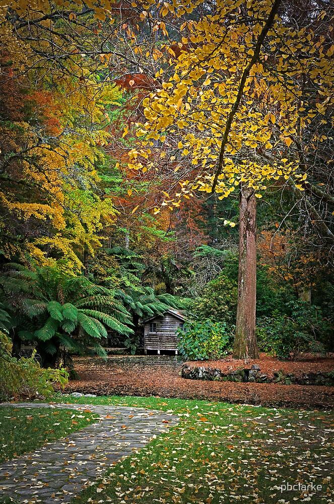 Boat Shed - Nicholas Gardens by pbclarke
