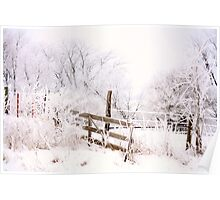 Frosty Morning Poster