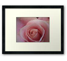 Bubblegum pink Framed Print