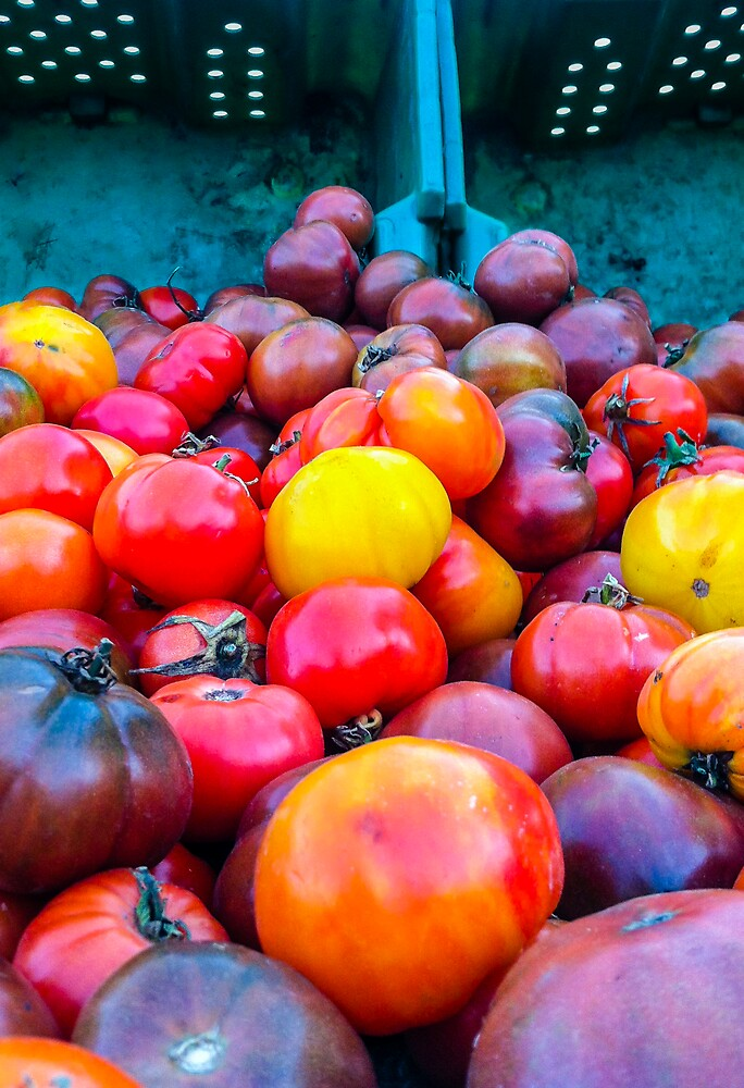 Heirloom Tomatoes by Dennis Reagan