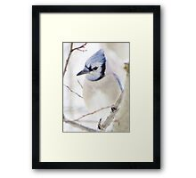 I'm Blue Over You Framed Print