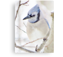 I'm Blue Over You Metal Print