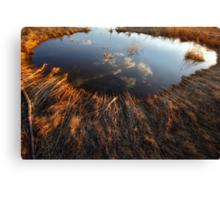 Upon A Pond Canvas Print