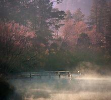 Daylesford Lake - Early Mist by pbclarke