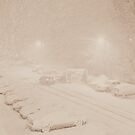 Blizzard 2013 by Vince Scaglione