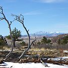 Pikes Peak by Bernie Garland