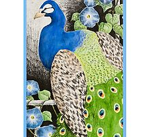 Peacock with Morning Glories by jkartlife