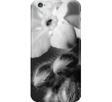 Forget-Me-Nots 6 B&W iPhone Case/Skin