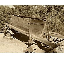 """ Water Wagon ""  Circa 1908 - 1930 Photographic Print"