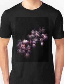 Fireworks 1 T-Shirt