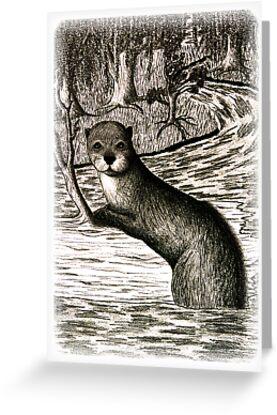 River Otter on Log by jkartlife