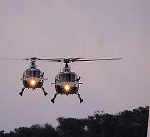 Royal Australian Navy Helicopters, Skyfire 2013 Canberra Australia  by Kym Bradley