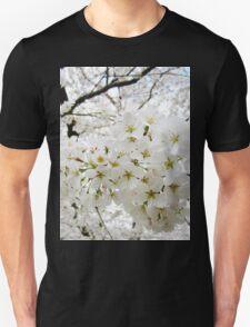 Cherry Blossoms 12 T-Shirt