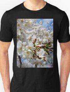 Cherry Blossoms 11 T-Shirt