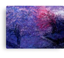 front yard trees Canvas Print