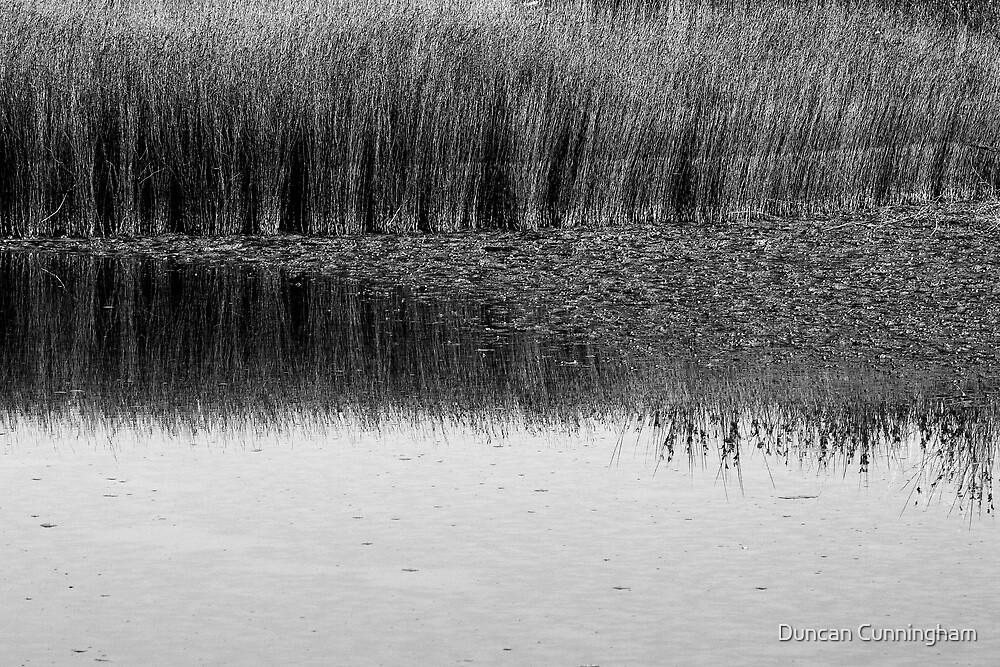 Floods, tides  by Duncan Cunningham