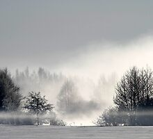 17.3.2013: Winter Morning I by Petri Volanen