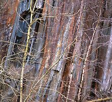 Quarry abstract #2 by Kevin Allan