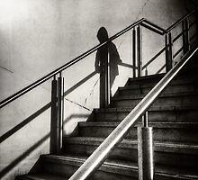 Descending Shadow by Nicola Smith