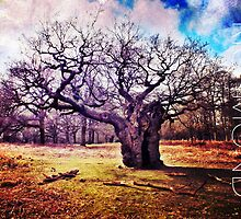 Richmond Park II by Ludwig Wagner