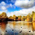 Battersea Park II by Ludwig Wagner