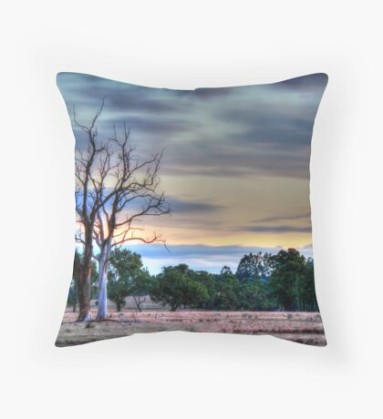 just before dark Throw Pillow