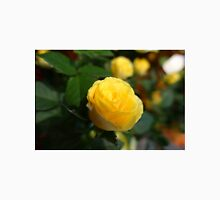 A lovely yellow rose flower picture. Classic T-Shirt