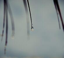 Dripping Blades by TehRen