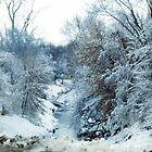 Snowy Creek by Jennifer Totten