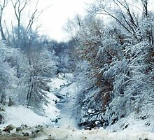 Snowy Creek by Jennifer Totten