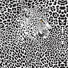 Black & White Camouflaged Leopard Design by artonwear
