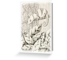 Chameleon in Rain Forest Greeting Card