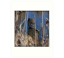 Ten Turtles Sunning Art Print