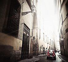 Fiat 500 by Paula Burgoon