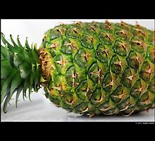 Ananas Comosus - Pineapple by © Sophie W. Smith