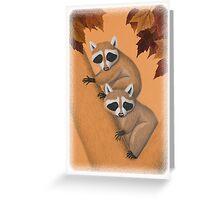 Raccoon's in Fall Tree Greeting Card