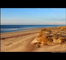 Fire Island Dunes - Smith Point, New York by © Sophie W. Smith