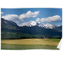 Spring in the Alps Poster